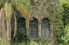 Howey-In-the-Hills, FL