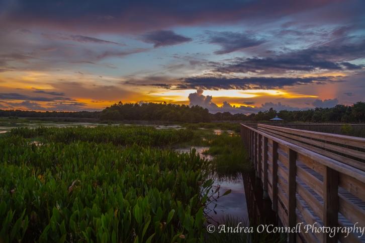 Sky Ablaze at Green Cay II